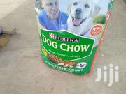 Dog Chow | Dogs & Puppies for sale in Greater Accra, Teshie-Nungua Estates