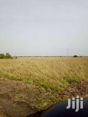 FOR SALE 350 Acres Of Farmland At ADA EAST, ADA DISTRICT | Land & Plots For Sale for sale in Western Region, Ahanta West