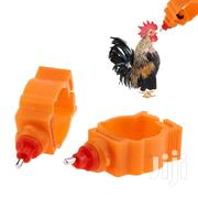 Chicken Water Nipple | Pet's Accessories for sale in Central Region, Awutu-Senya