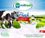 FRESH PASTEURIZED COW MILK | Meals & Drinks for sale in Eastern Region, Asuogyaman