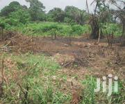 FOR SALE  5,000 Acres Fertile Farmland Situate Within SUHUM DISTRICT | Land & Plots For Sale for sale in Eastern Region, Suhum/Kraboa/Coaltar