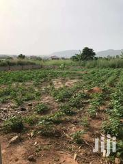Farm Land At AKUSE Long Lease   Land & Plots For Sale for sale in Greater Accra, Tema Metropolitan