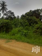3 Acres of Registered Land at Kubease-Kumasi Road | Land & Plots For Sale for sale in Ashanti, Ejisu-Juaben Municipal