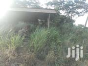 One Plot Of Land Selling At Mampong   Land & Plots For Sale for sale in Eastern Region, Akuapim North