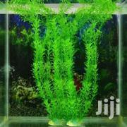 Aquarium Artificial Plant | Pet's Accessories for sale in Western Region, Shama Ahanta East Metropolitan