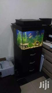 Aquarium For Sale | Fish for sale in Greater Accra, Teshie new Town