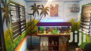 Aquarium | Fish for sale in Greater Accra, Achimota
