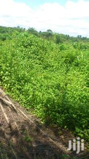 75 Acres of Farmland at Akroso   Land & Plots For Sale for sale in Greater Accra, Ga East Municipal
