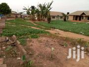 4 Plot Combined For Sale Techiman | Land & Plots For Sale for sale in Brong Ahafo, Techiman Municipal