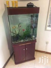 Aquarium For Sale | Fish for sale in Greater Accra, Dzorwulu