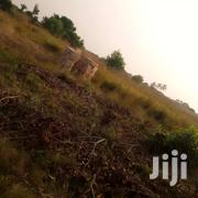 2 Plots Of Land In Ada  Along The Main Road | Land & Plots For Sale for sale in Greater Accra, Ashaiman Municipal