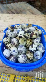 Fresh Organic Quail Eggs | Meals & Drinks for sale in Greater Accra, Adenta Municipal
