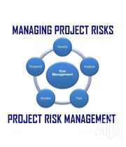 Managing Project Risks | CDs & DVDs for sale in Greater Accra, Okponglo