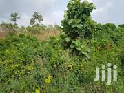 Farmland In Bono East | Landscaping & Gardening Services for sale in Brong Ahafo, Techiman Municipal