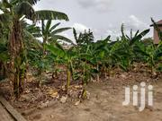 Land For Sale | Land & Plots For Sale for sale in Greater Accra, Kwashieman