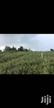 Hill Top Land . | Land & Plots For Sale for sale in Greater Accra, Dansoman