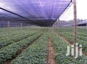 Agricultural Shade Net | Farm Machinery & Equipment for sale in Greater Accra, Okponglo