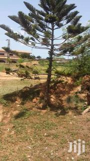 Plot of Land | Land & Plots For Sale for sale in Greater Accra, Ga West Municipal