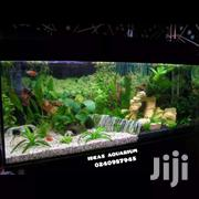 7 Gallon Of Water Aquarium | Fish for sale in Greater Accra, Achimota