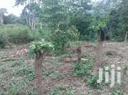 4plots(1acre) of Land at Hohoe | Land & Plots For Sale for sale in Volta Region, Hohoe Municipal