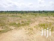 Farm Land At Afienya Shai Hills | Land & Plots For Sale for sale in Greater Accra, Teshie-Nungua Estates