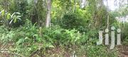Farm Land For Sale | Landscaping & Gardening Services for sale in Western Region, Aowin/Suaman Bia
