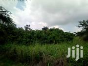 Land For Sale At Aburi Mountains. | Land & Plots For Sale for sale in Central Region, Abura/Asebu/Kwamankese