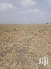 Good Lands In A Community. Tsopoli. | Land & Plots For Sale for sale in Greater Accra, Ashaiman Municipal