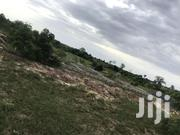 Half Plot of Land at Afienya - Odumse | Land & Plots For Sale for sale in Greater Accra, Tema Metropolitan