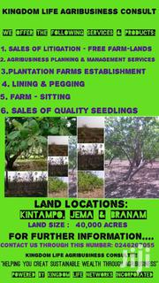 40,000 Acres Of Farmland For Sale | Landscaping & Gardening Services for sale in Brong Ahafo, Kintampo North Municipal