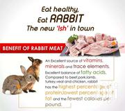 Rabbit | Livestock & Poultry for sale in Greater Accra, Adenta Municipal