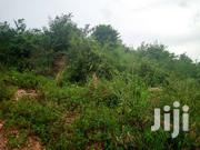 Plot of Land for Sale | Land & Plots For Sale for sale in Greater Accra, Adenta Municipal