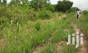 Farmland At Awutu Breku | Automotive Services for sale in Greater Accra, Ledzokuku-Krowor