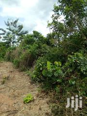 40 Acres Farm Land For Sale | Landscaping & Gardening Services for sale in Eastern Region, Suhum/Kraboa/Coaltar