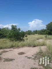 Farm Lands At Ada For Sale | Land & Plots For Sale for sale in Greater Accra, Ashaiman Municipal