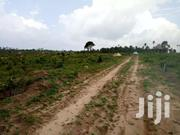 Plots At Amrahia, Oyibi And Dodowa | Land & Plots For Sale for sale in Greater Accra, Adenta Municipal