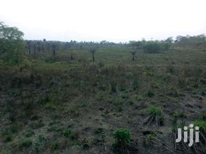 Farming Land For Sale