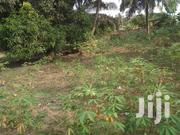 Gold Land For Sale | Land & Plots For Sale for sale in Ashanti, Adansi South
