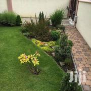 Landscaping Expert Services | Landscaping & Gardening Services for sale in Greater Accra, North Kaneshie