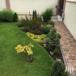 Landscaping Expert Services