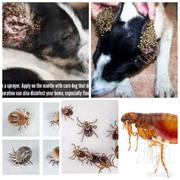 Fleas And Ticks Fumigation Services Ghc 150 | Pet's Accessories for sale in Greater Accra, Accra Metropolitan
